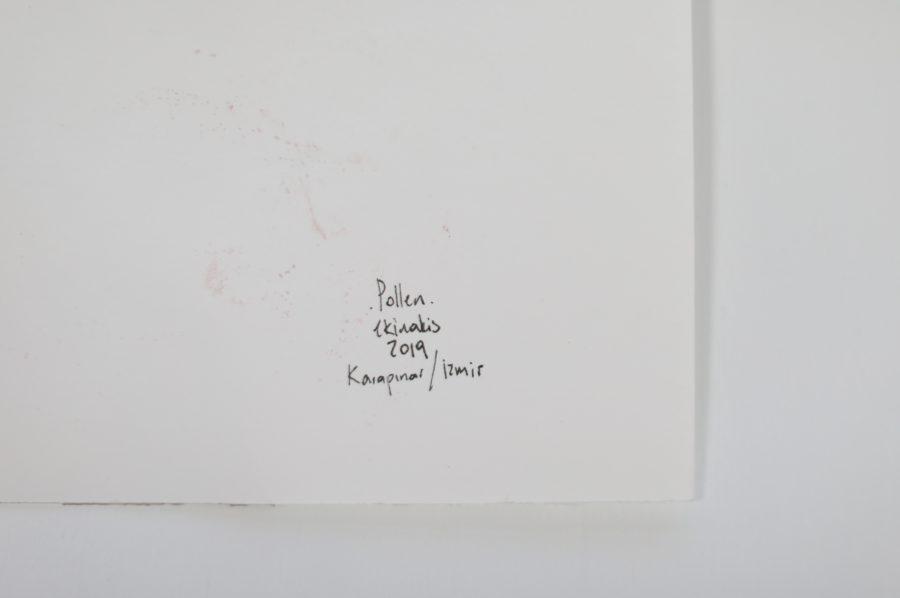 Pollen Signature